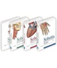 Atlas anatomije čovjeka (Sobotta)