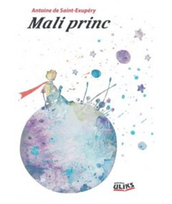 Mali princ - Mali planer